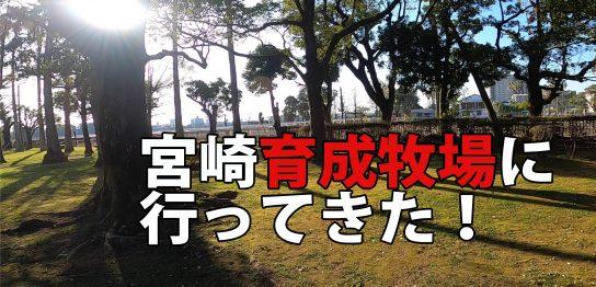 ikuseibokujyo